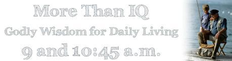 More Than IQ - Blog Banner