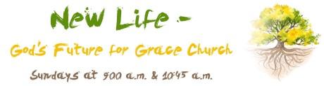 New Life - Blog Banner